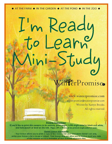 Preschool Mini-Study Cover
