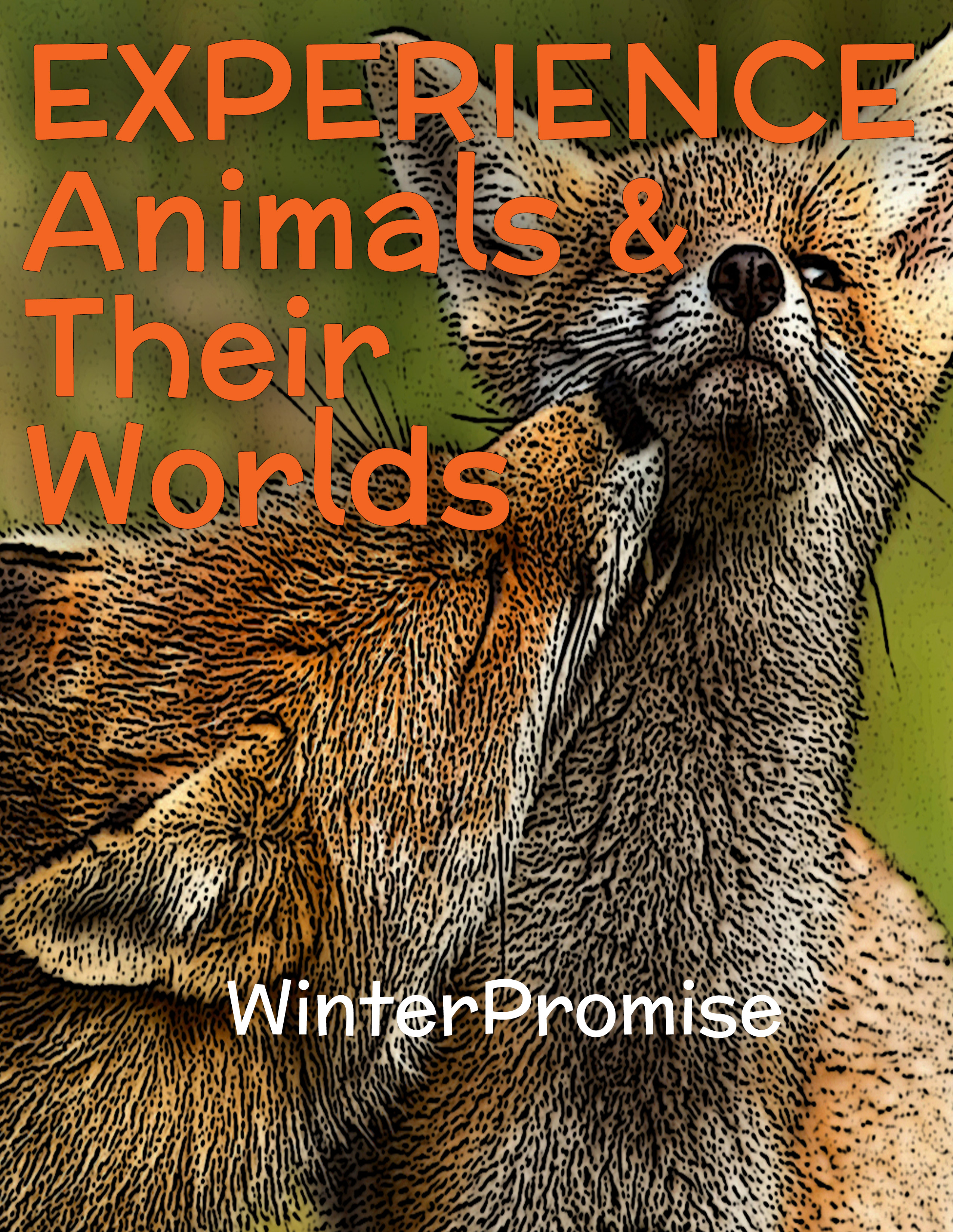 Animal_Worlds_EXPERIENCE_Sample_Cover